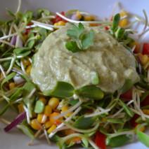 Salata din vlastari de floarea soarelui